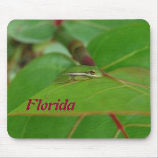 Rana arbórea Mousepad de la Florida Alfombrillas De Ratón