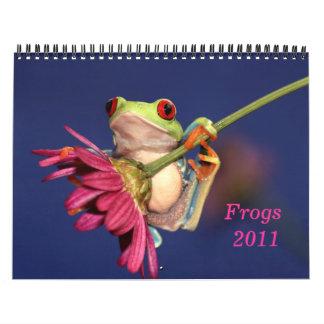 rana arbórea observada rojo, calendario de las ran