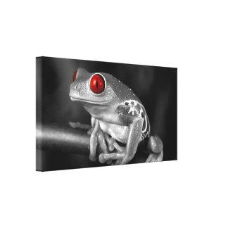 Rana arbórea observada rojo impresión de lienzo