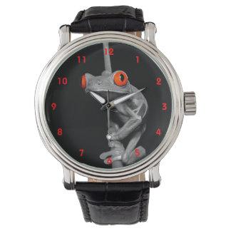 Rana arbórea observada rojo relojes