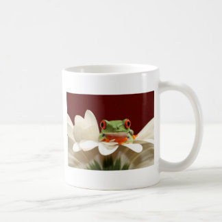 rana arbórea observada rojo taza básica blanca