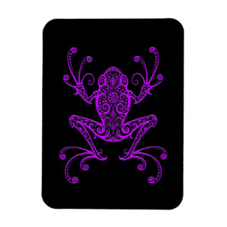 Rana arbórea púrpura compleja en negro imán