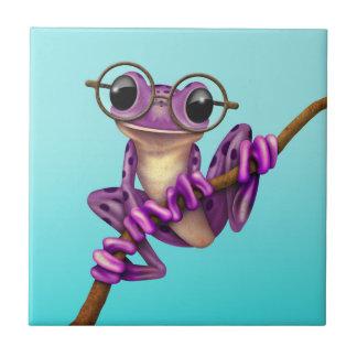 Rana arbórea púrpura linda con los vidrios del ojo azulejo cuadrado pequeño