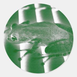 rana arbórea que mira el diseño animal del etiqueta redonda