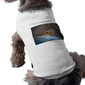 rana arbórea que mira el espectador en azul camisetas de perrito
