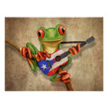 Rana arbórea que toca la guitarra de la bandera de poster
