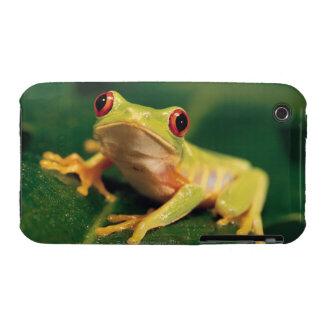 Rana arbórea roja del ojo iPhone 3 Case-Mate protectores
