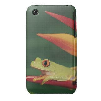 Rana arbórea roja del ojo que se sienta en la flor Case-Mate iPhone 3 coberturas