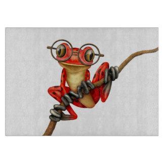 Rana arbórea roja linda con los vidrios del ojo en