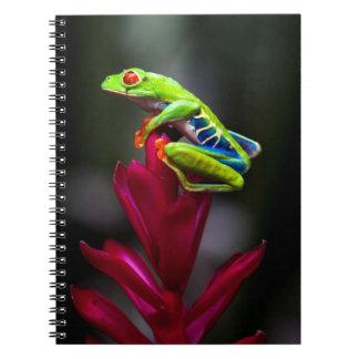 rana arbórea Rojo-observada Libro De Apuntes Con Espiral