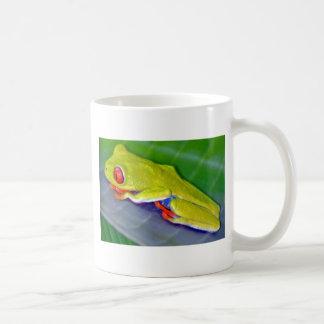 Rana arbórea Rojo-Observada Taza De Café