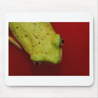 rana arbórea alfombrilla de ratones