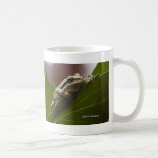Rana arbórea taza básica blanca