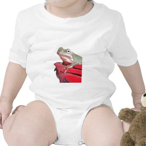 rana arbórea traje de bebé