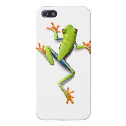 Rana arbórea verde australiana - caso realista est iPhone 5 cárcasa