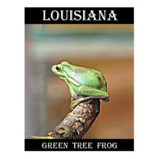 Rana arbórea verde de Luisiana Tarjeta Postal