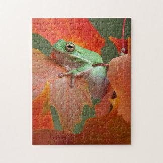 Rana arbórea verde en caída rompecabeza con fotos