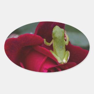 Rana arbórea verde en rosa rojo pegatina ovalada