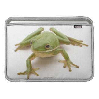 Rana arbórea verde funda  MacBook