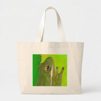 Rana arbórea verde hermosa giviing la muestra de p bolsa
