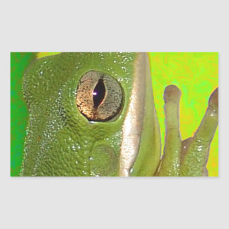 Rana arbórea verde hermosa giviing la muestra de rectangular altavoces