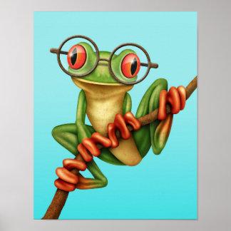 Rana arbórea verde linda con los vidrios del ojo e poster