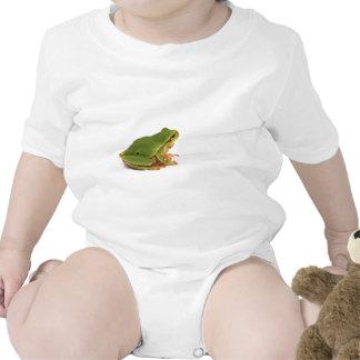 rana arbórea verde traje de bebé