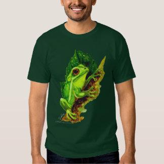 Rana arbórea verde playeras