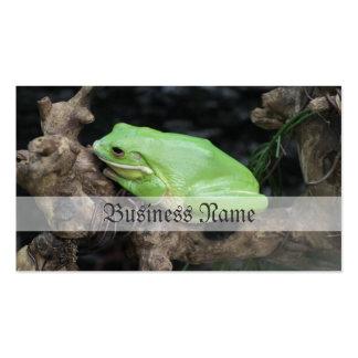 Rana arbórea verde tarjetas de visita