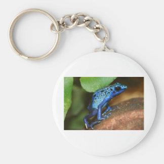 rana azul de la flecha del veneno llavero redondo tipo pin