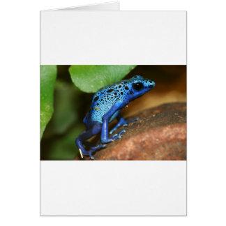 rana azul de la flecha del veneno tarjetón