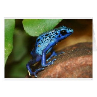 rana azul de la flecha del veneno tarjetas
