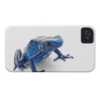 Rana azul del dardo del veneno (Dendrobates iPhone 4 Cárcasas