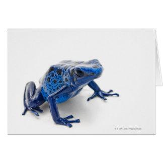 Rana azul del dardo del veneno (Dendrobates Tincto Tarjeta