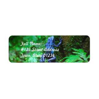 Rana azul del dardo del veneno etiqueta de remite