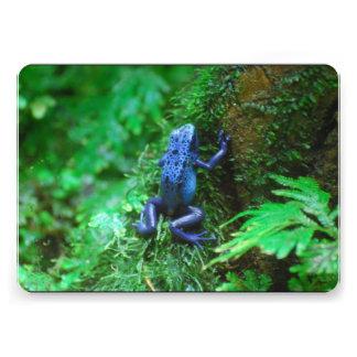 Rana azul del dardo del veneno anuncios personalizados
