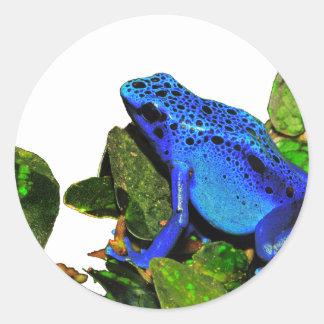 Rana azul del dardo del veneno etiqueta redonda