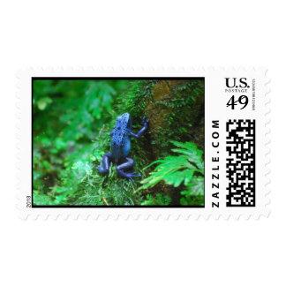 Rana azul del dardo del veneno sellos