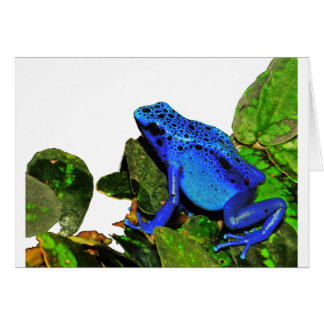 Rana azul del dardo del veneno tarjeton