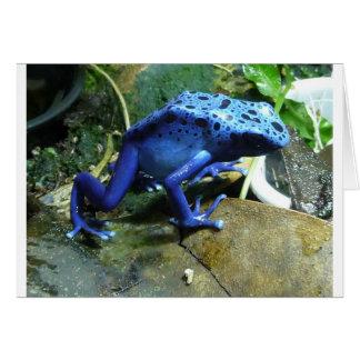 Rana azul del dardo del veneno felicitaciones