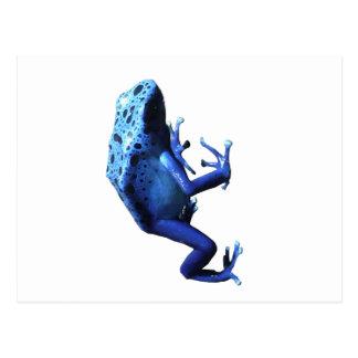 Rana azul del dardo del veneno tarjeta postal