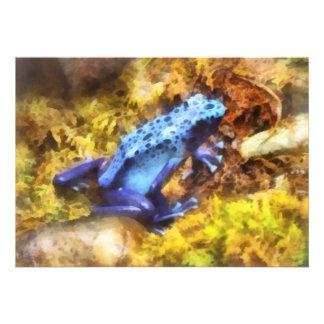 Rana azul del dardo anuncios