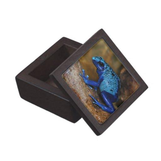 Rana azul Dendrobates Azureus del dardo del veneno Cajas De Regalo De Calidad
