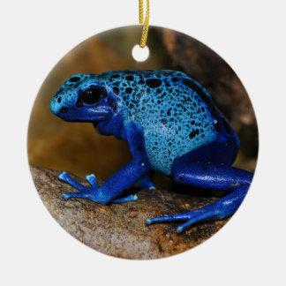 Rana azul Dendrobates Azureus del dardo del veneno Ornamente De Reyes