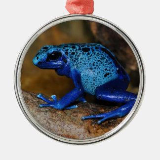 Rana azul Dendrobates Azureus del dardo del veneno Ornamento De Reyes Magos