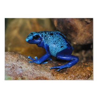 Rana azul Dendrobates Azureus del dardo del veneno Comunicado