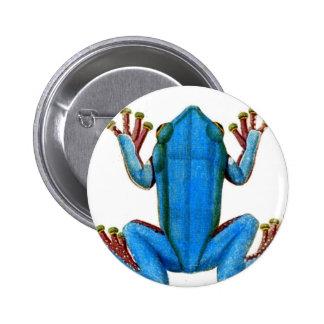 Rana azul pins
