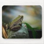 Rana de bronce en el Froggy Alfombrilla De Ratones