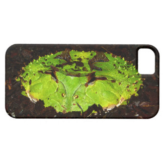 Rana de cuernos Ceratophrys Cornuta de Suriname iPhone 5 Protectores