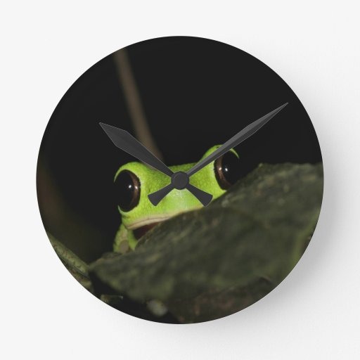 Rana de la hoja del Lemur Reloj De Pared